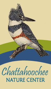 Chattahoochee Nature Center Winter Break Camp