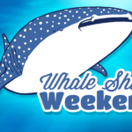 Celebrate Whale Shark Weekend at Georgia Aquarium