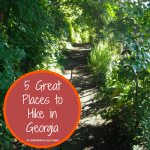 5 Great Places to Hike in Georgia + 5 Tips For Making Hiking With Kids Fun