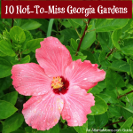 10 Botanical Gardens in Georgia