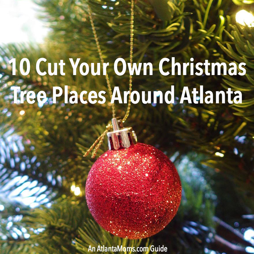 10 Cut Your Own Christmas Tree Places Around Altanta – 2014 Guide