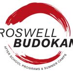 Roswell Budokan Atlanta summer camp