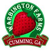 Warbington Farms - Georgia Berry Picking