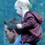 Father's Day at Georgia Aquarium