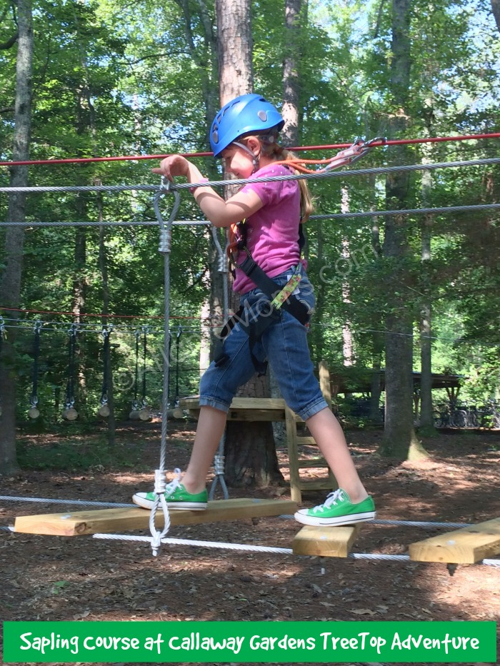 Young Kids Can Zip Into Adventure At Callaway Gardens